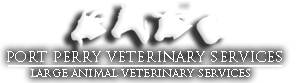 Port Perry Veterinary Large Animal Services